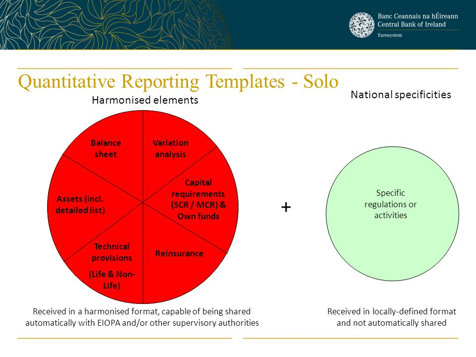 Quantitative Reporting Templates - Solo