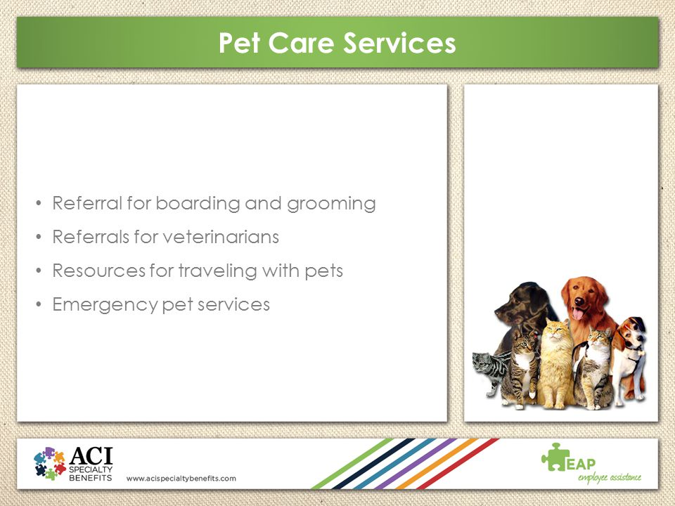Pet Care Services Referral for boarding and grooming