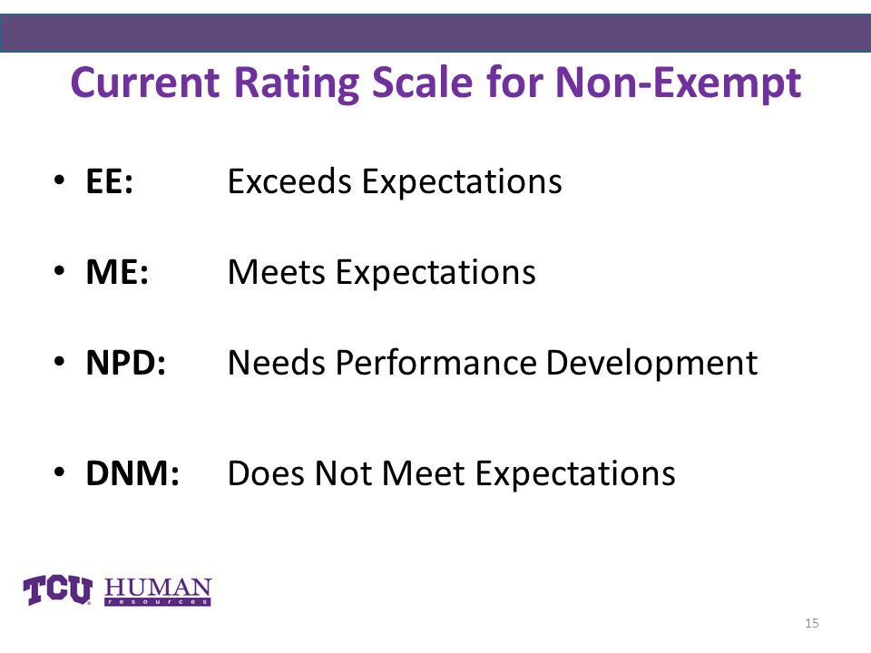 Current Rating Scale for Non-Exempt