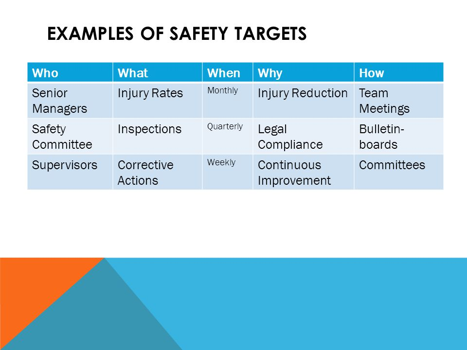 Examples of Safety Targets
