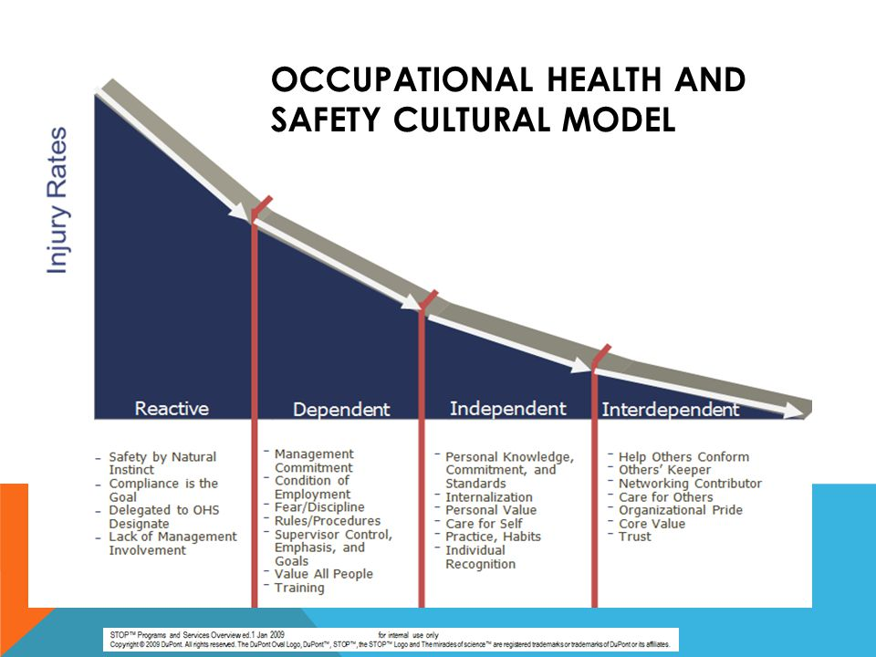 Occupational Health and Safety Cultural Model