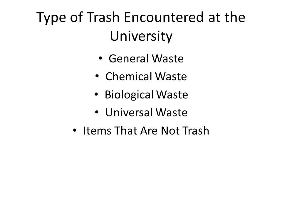 Type of Trash Encountered at the University