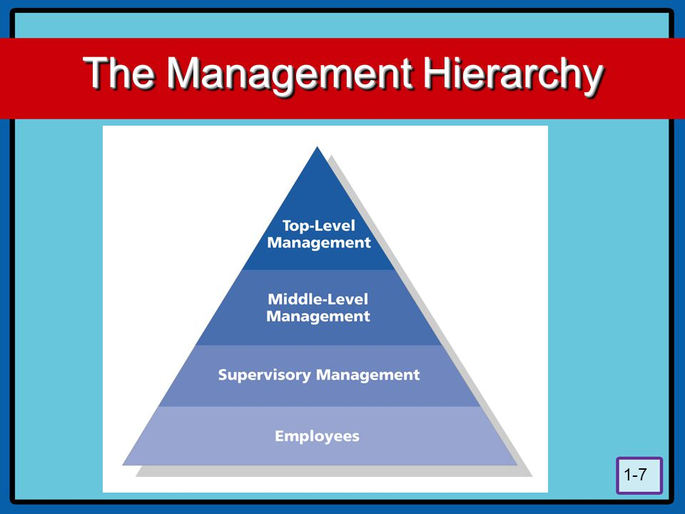 The Management Hierarchy
