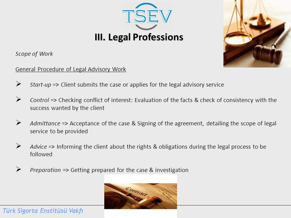 III. Legal Professions Scope of Work