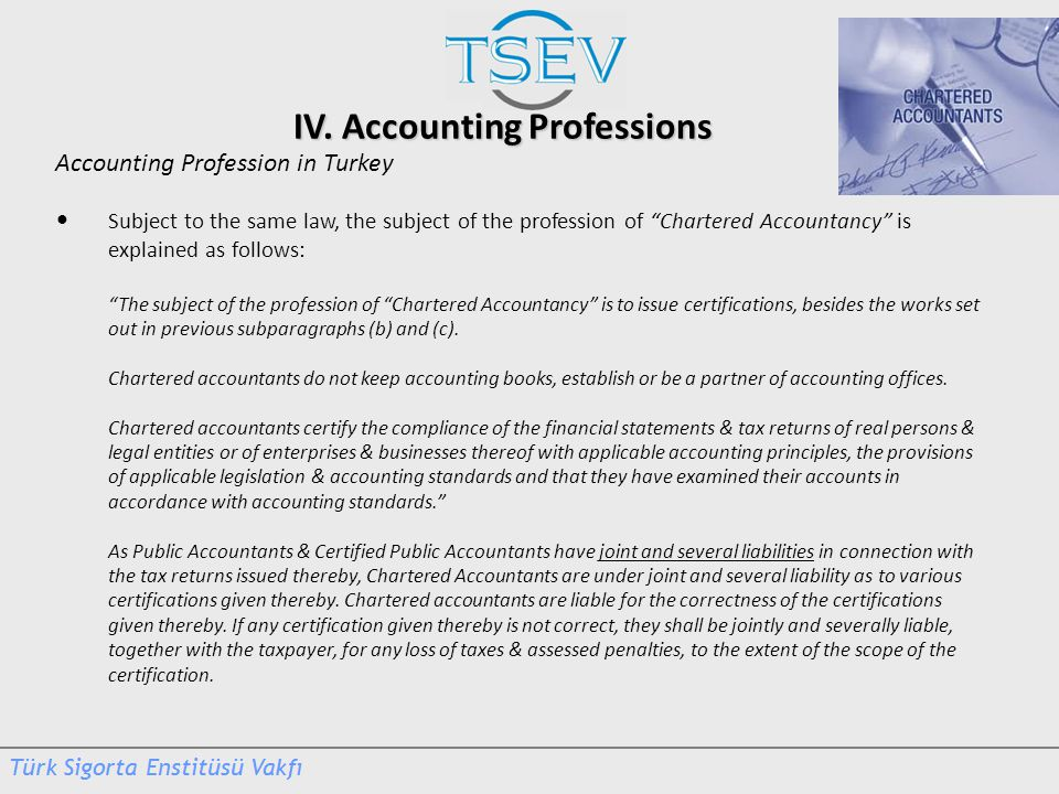 IV. Accounting Professions