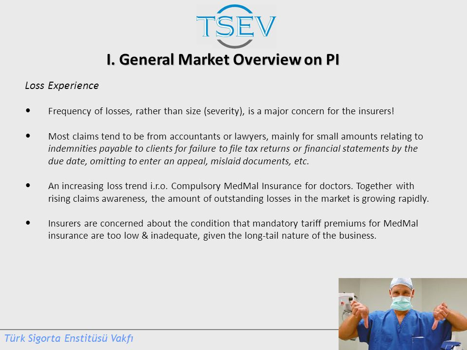 I. General Market Overview on PI