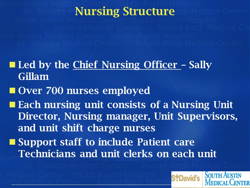 Nursing Structure Led by the Chief Nursing Officer – Sally Gillam