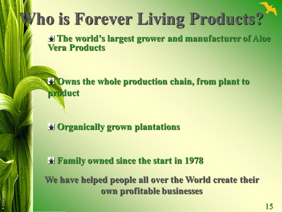 Who is Forever Living Products