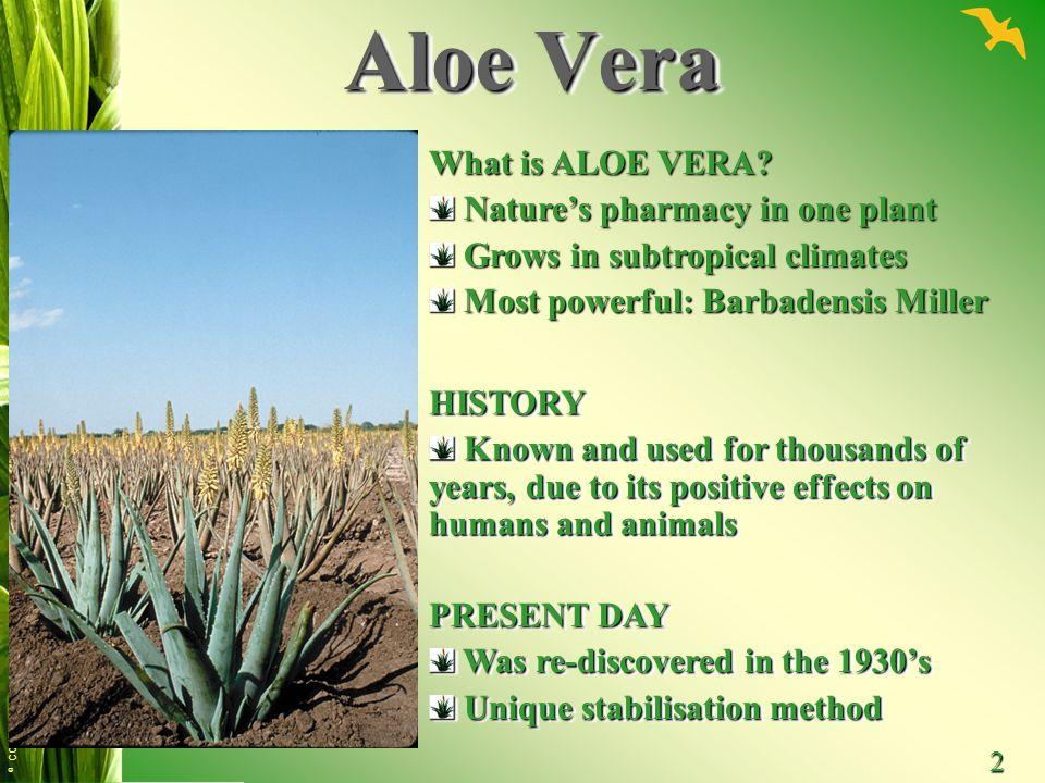 Aloe Vera What is ALOE VERA Nature's pharmacy in one plant