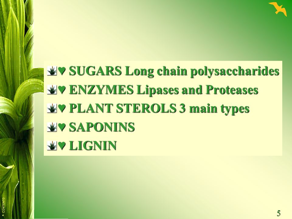 ♥ SUGARS Long chain polysaccharides ♥ ENZYMES Lipases and Proteases