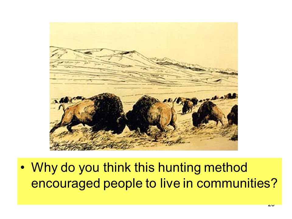 Why do you think this hunting method encouraged people to live in communities