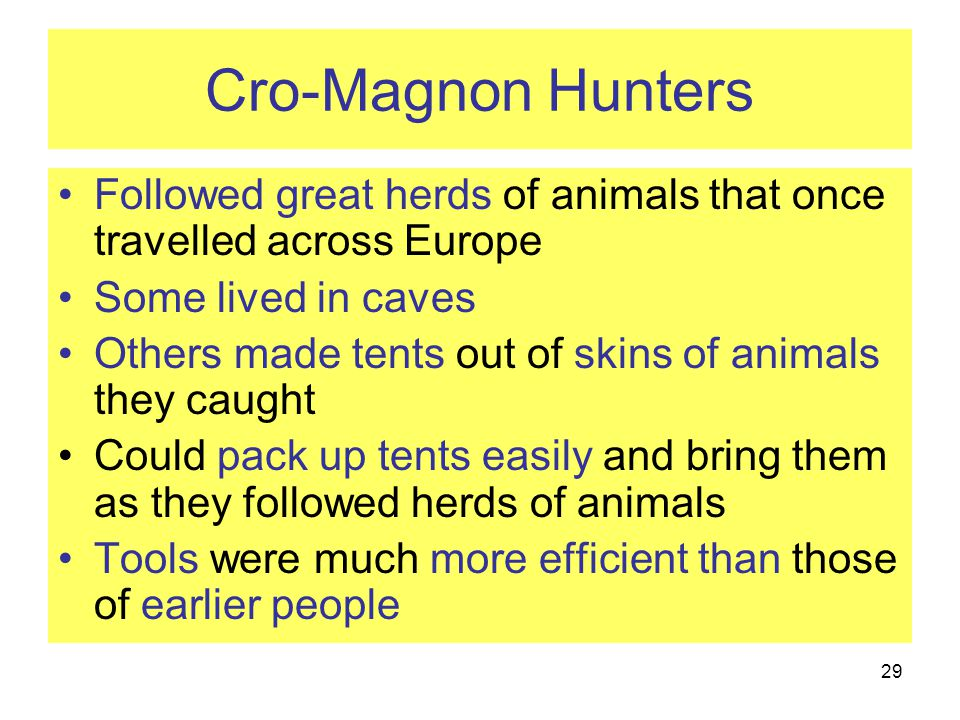 Cro-Magnon Hunters Followed great herds of animals that once travelled across Europe. Some lived in caves.