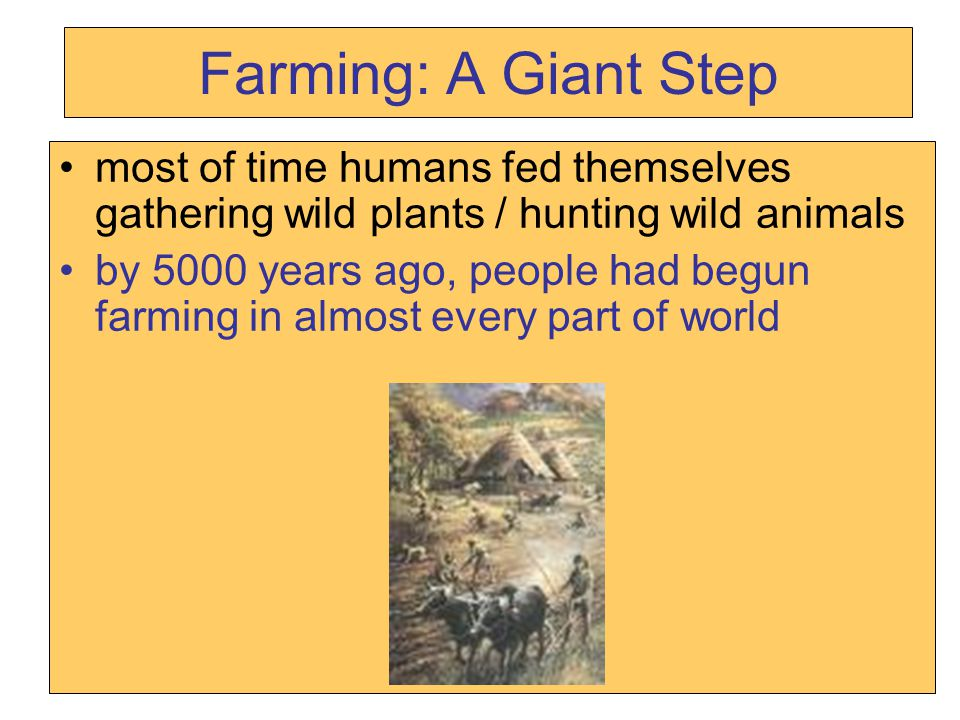 Farming: A Giant Step most of time humans fed themselves gathering wild plants / hunting wild animals.