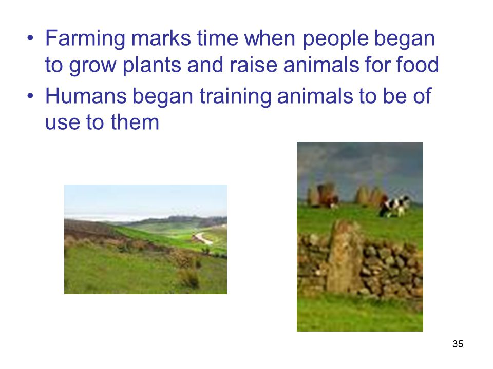 Farming marks time when people began to grow plants and raise animals for food