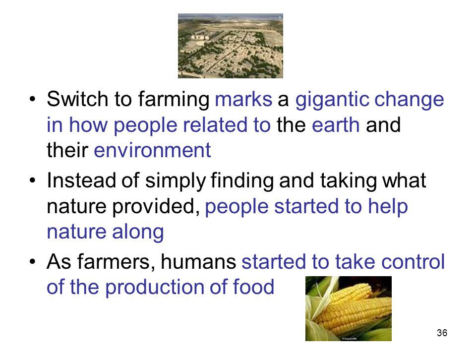 Switch to farming marks a gigantic change in how people related to the earth and their environment