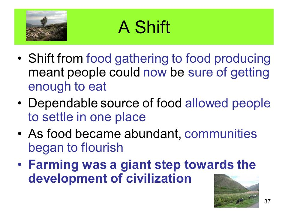A Shift Shift from food gathering to food producing meant people could now be sure of getting enough to eat.