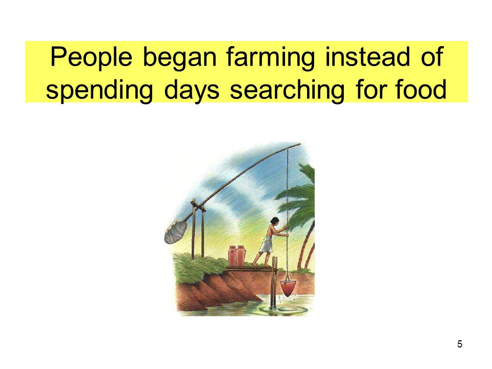 People began farming instead of spending days searching for food