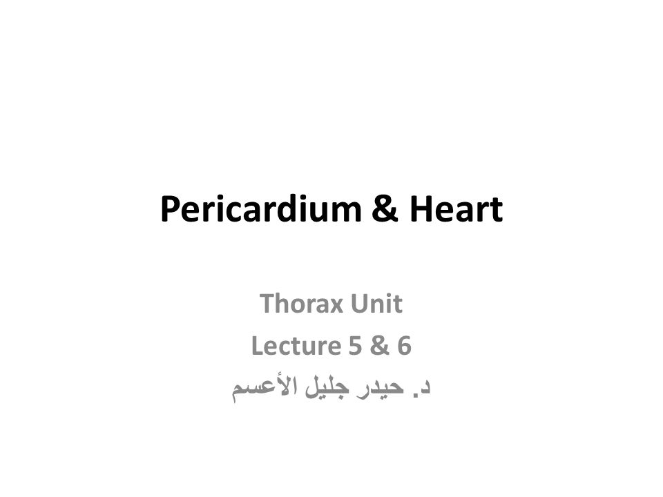 Thorax Unit Lecture 5 & 6 د. حيدر جليل الأعسم