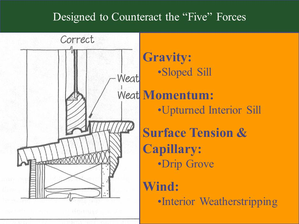 Designed to Counteract the Five Forces