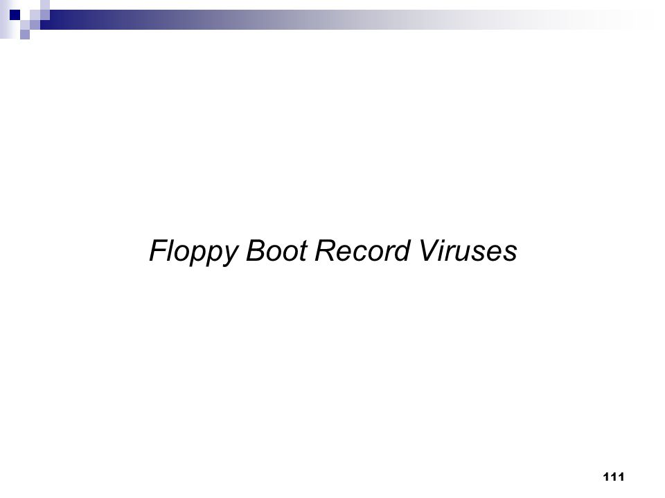 Floppy Boot Record Viruses