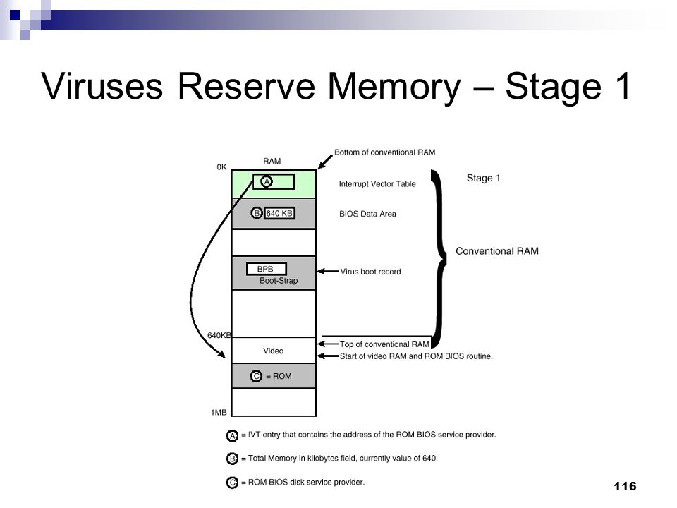 Viruses Reserve Memory – Stage 1