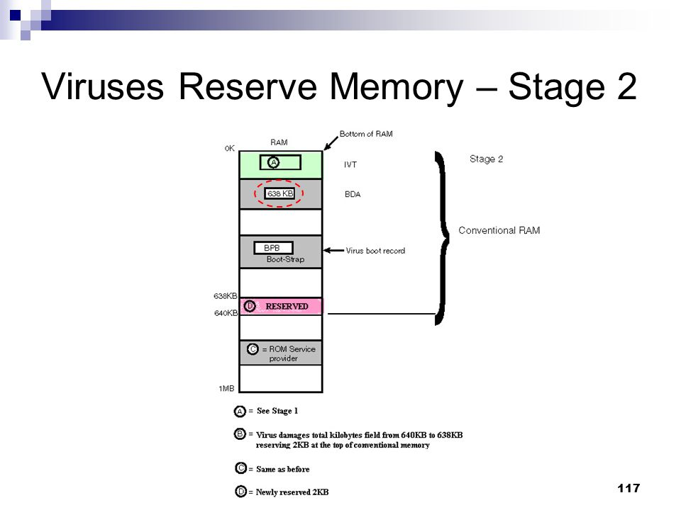 Viruses Reserve Memory – Stage 2