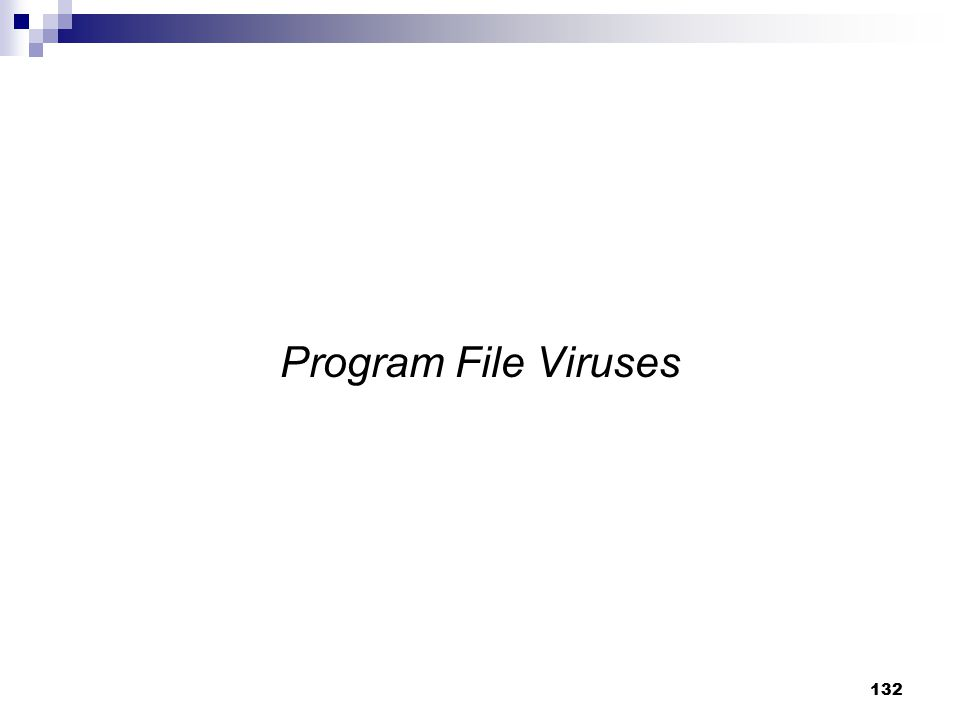 Program File Viruses