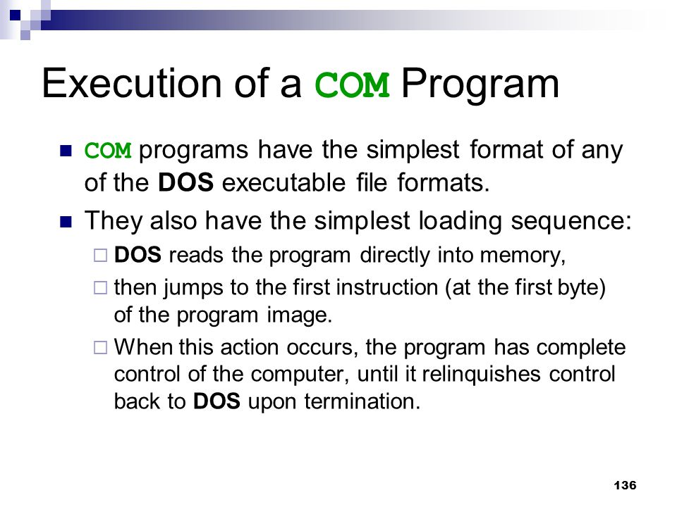 Execution of a COM Program