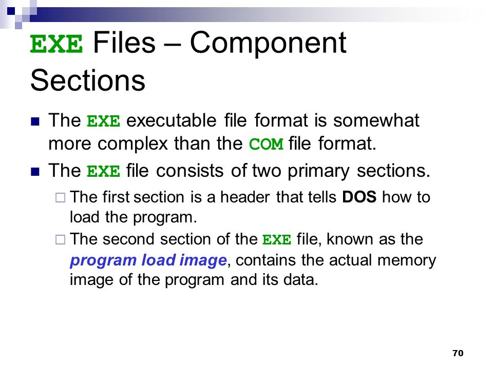 EXE Files – Component Sections