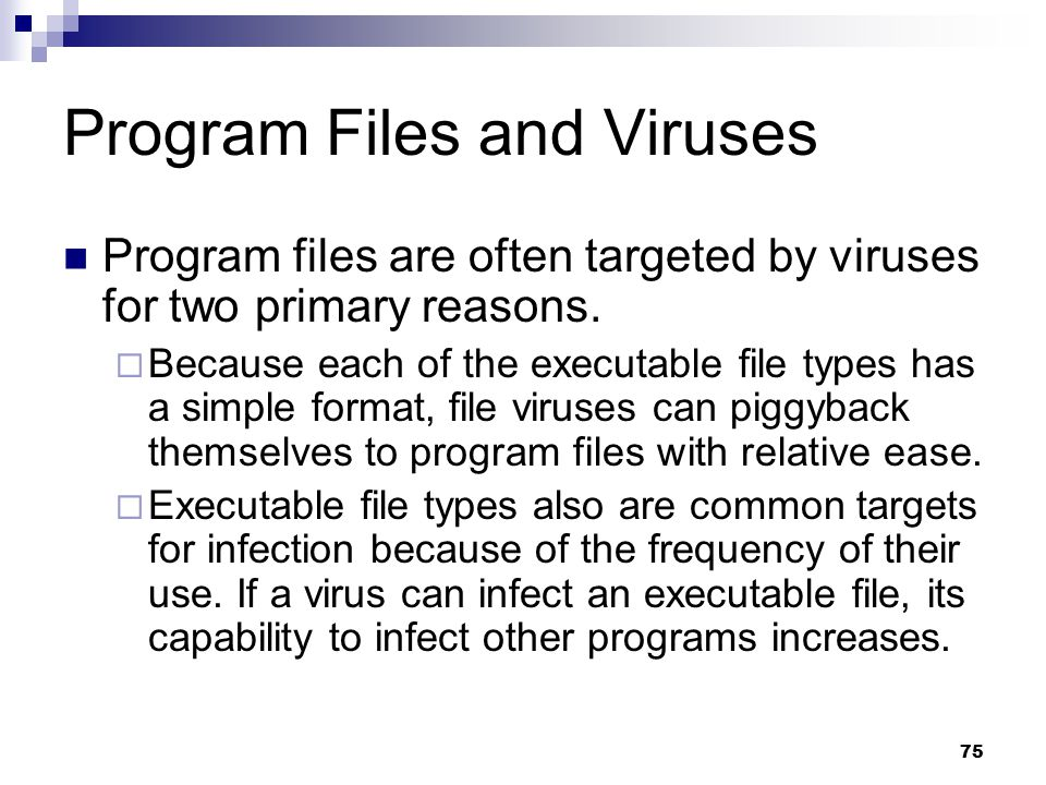 Program Files and Viruses