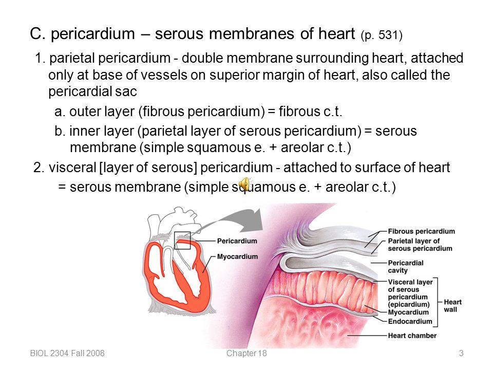 C. pericardium – serous membranes of heart (p. 531)