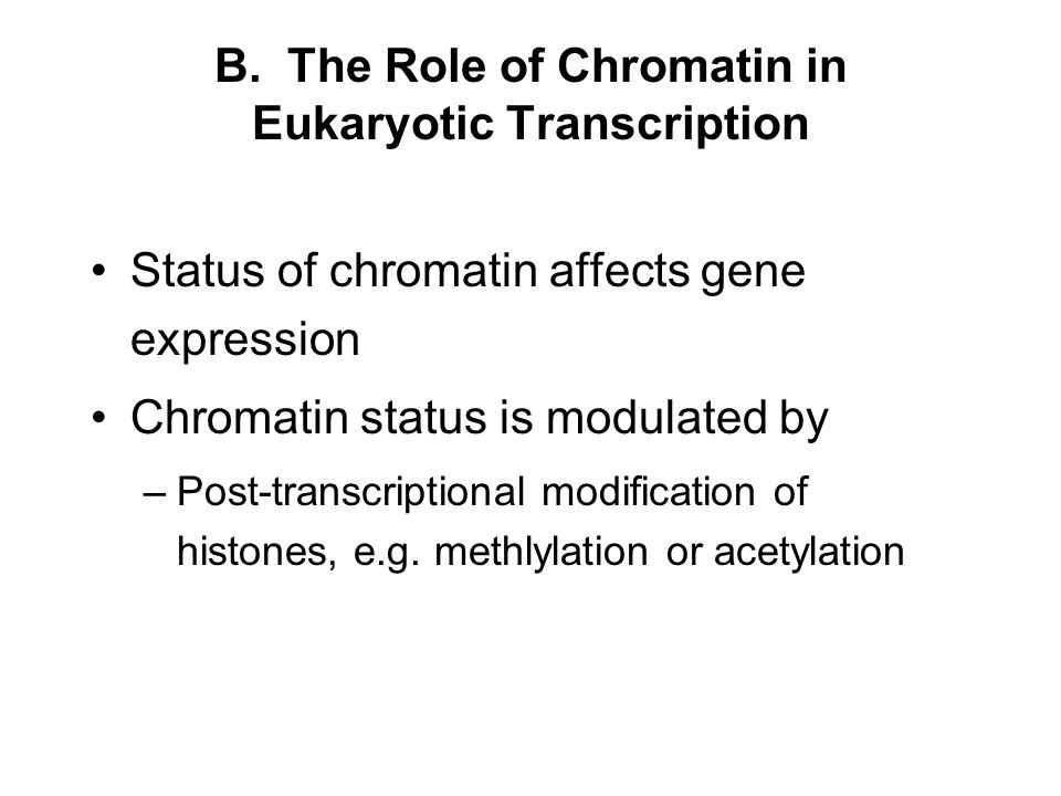 B. The Role of Chromatin in Eukaryotic Transcription