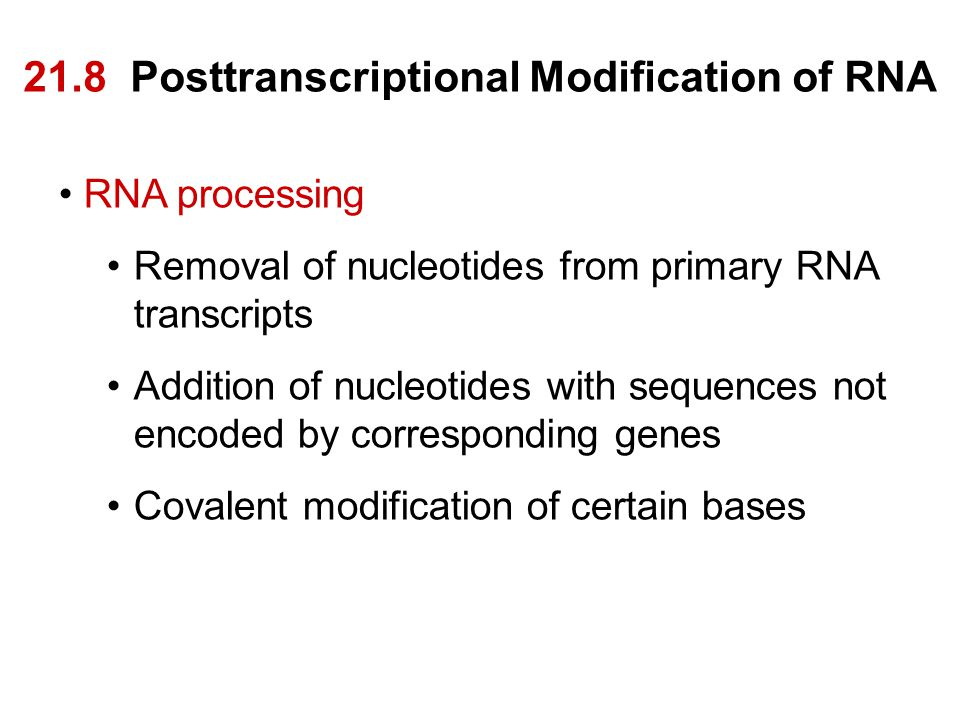 21.8 Posttranscriptional Modification of RNA