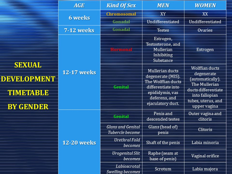 SEXUAL DEVELOPMENT TIMETABLE BY GENDER