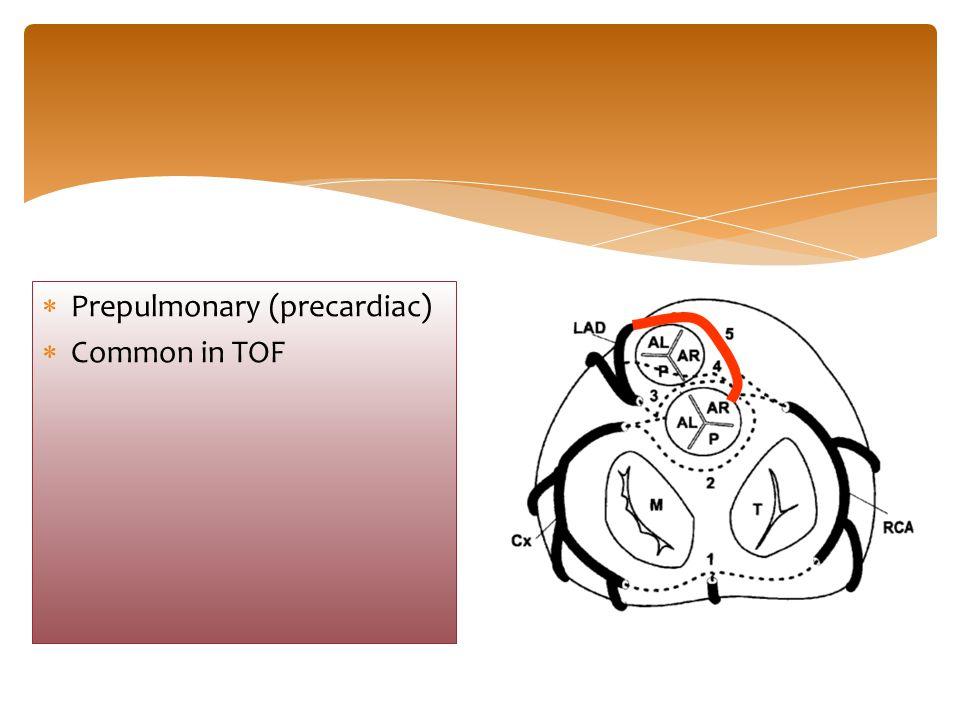 Prepulmonary (precardiac)