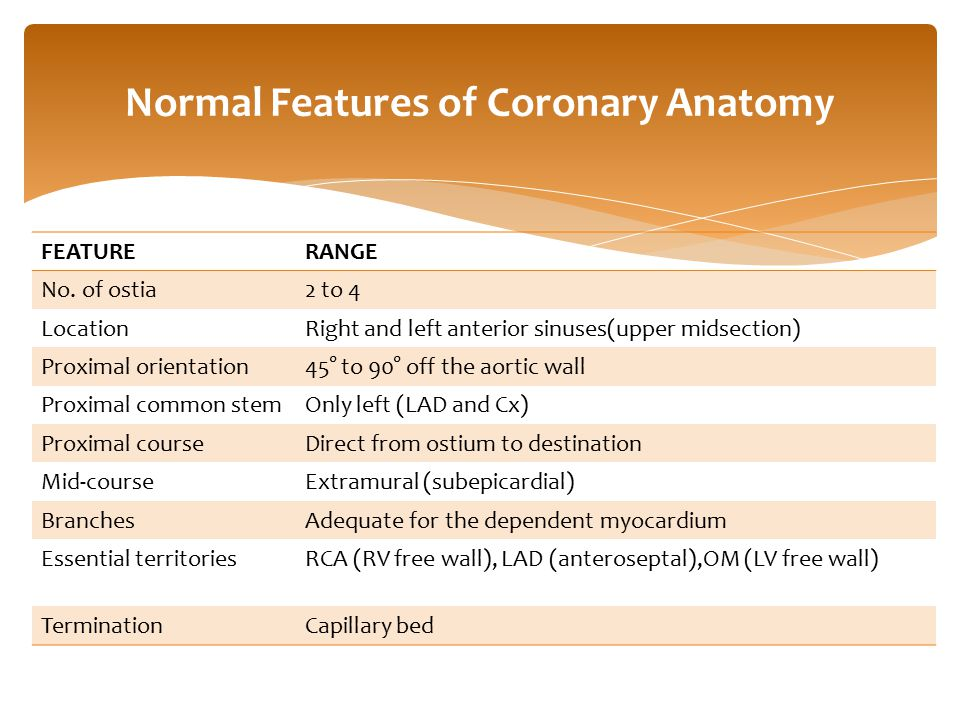 Normal Features of Coronary Anatomy