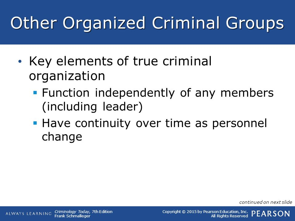 Other Organized Criminal Groups