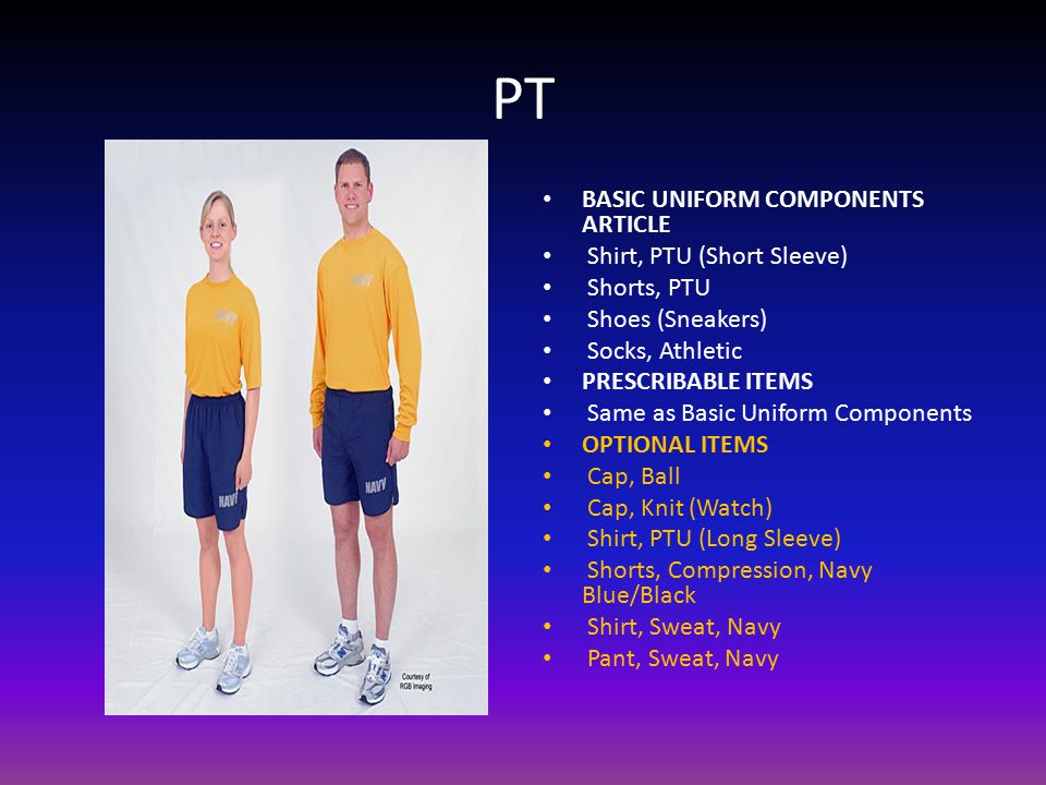 PT BASIC UNIFORM COMPONENTS ARTICLE Shirt, PTU (Short Sleeve)