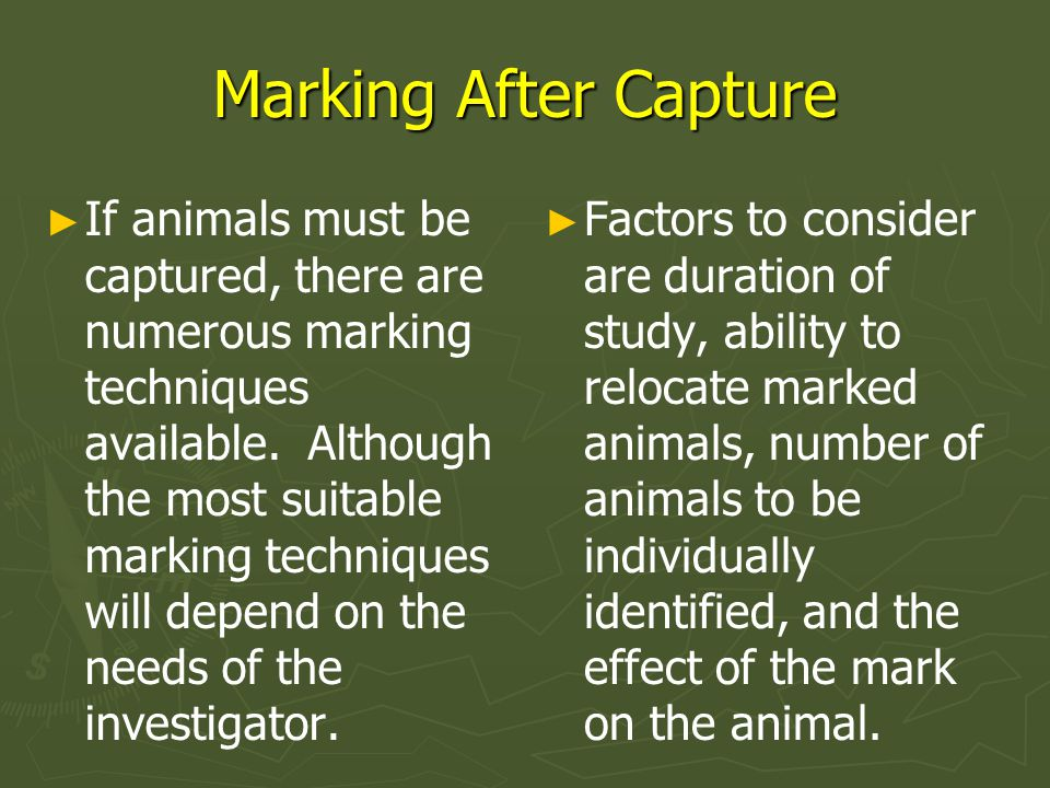 Marking After Capture