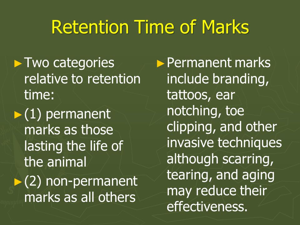 Retention Time of Marks