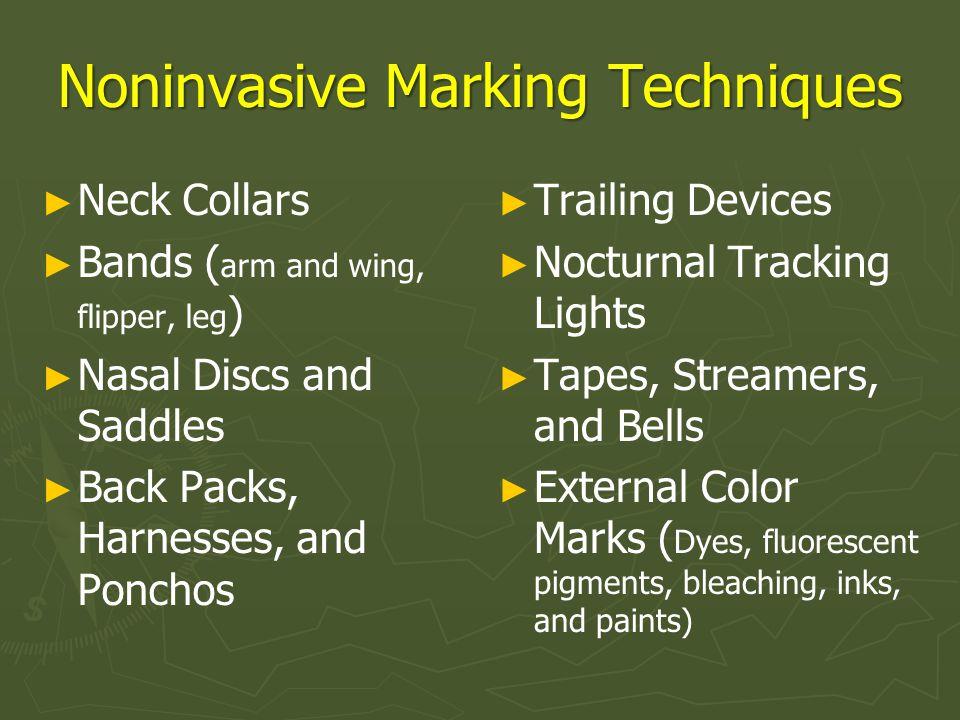 Noninvasive Marking Techniques