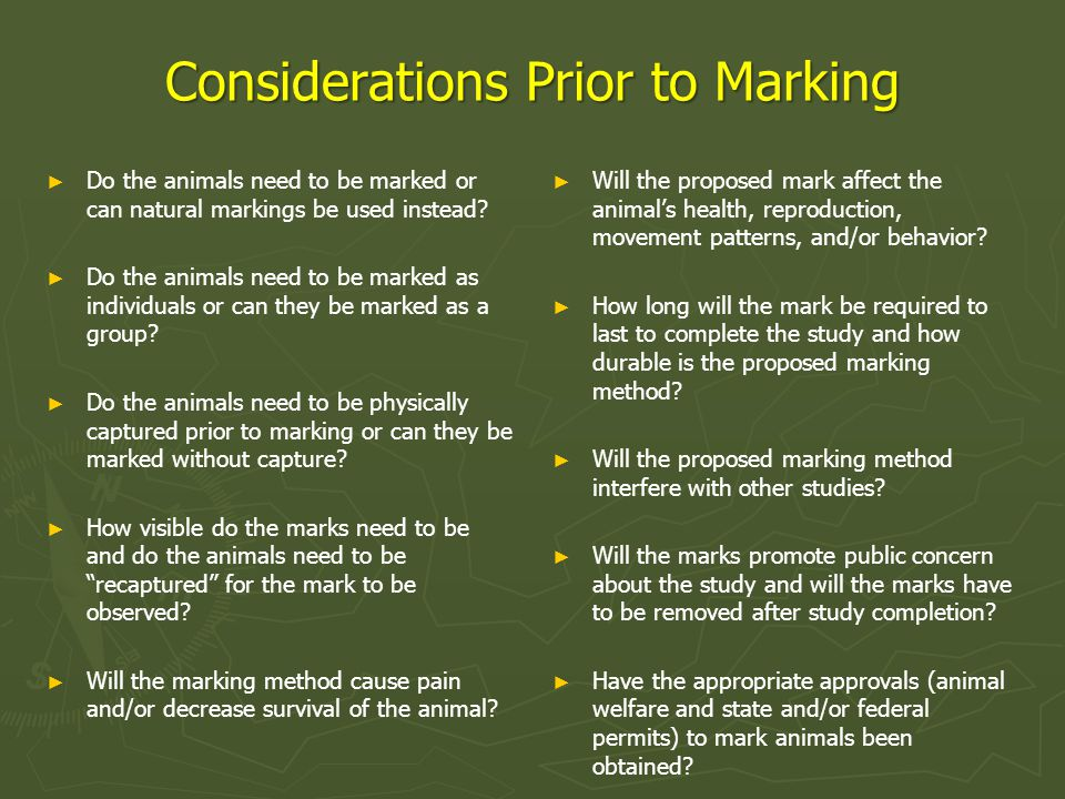 Considerations Prior to Marking