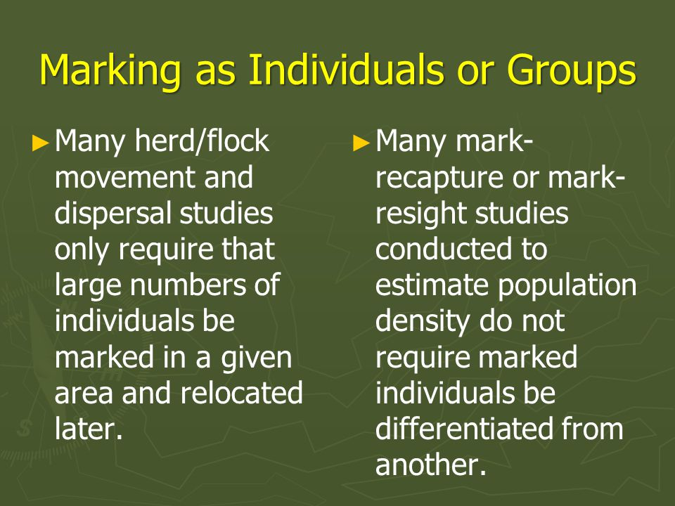 Marking as Individuals or Groups
