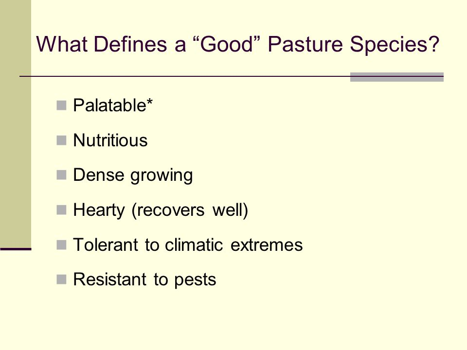 What Defines a Good Pasture Species