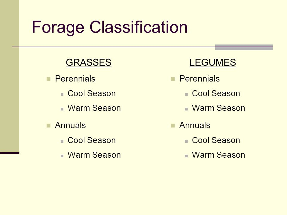 Forage Classification