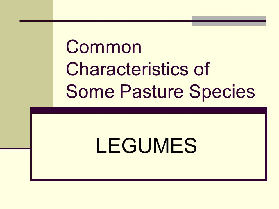 Common Characteristics of Some Pasture Species