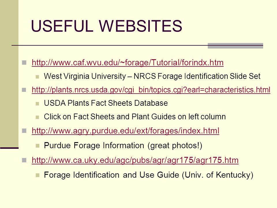 USEFUL WEBSITES http://www.caf.wvu.edu/~forage/Tutorial/forindx.htm