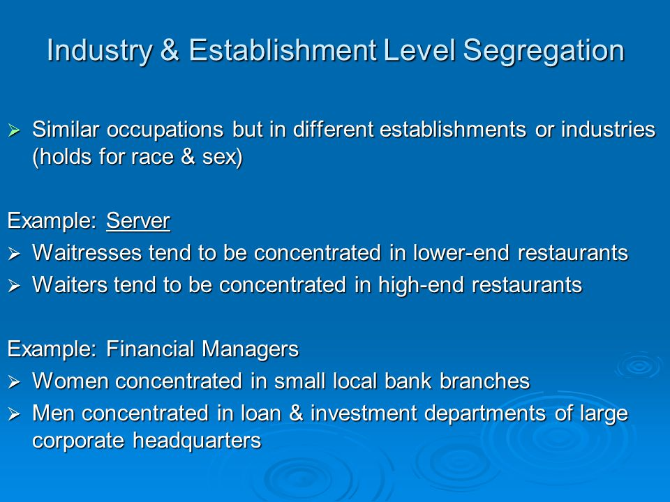 Industry & Establishment Level Segregation