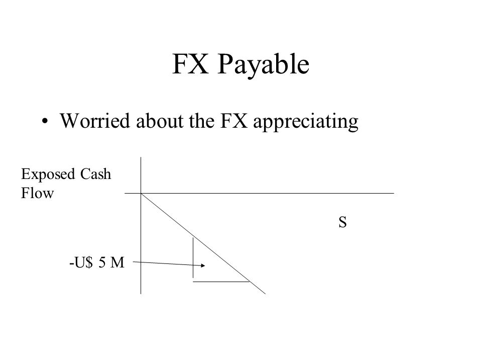 FX Payable Worried about the FX appreciating Exposed Cash Flow S