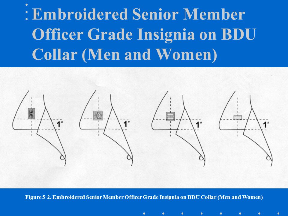 Embroidered Senior Member Officer Grade Insignia on BDU Collar (Men and Women)
